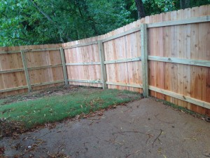 Privacy Fence and Patio